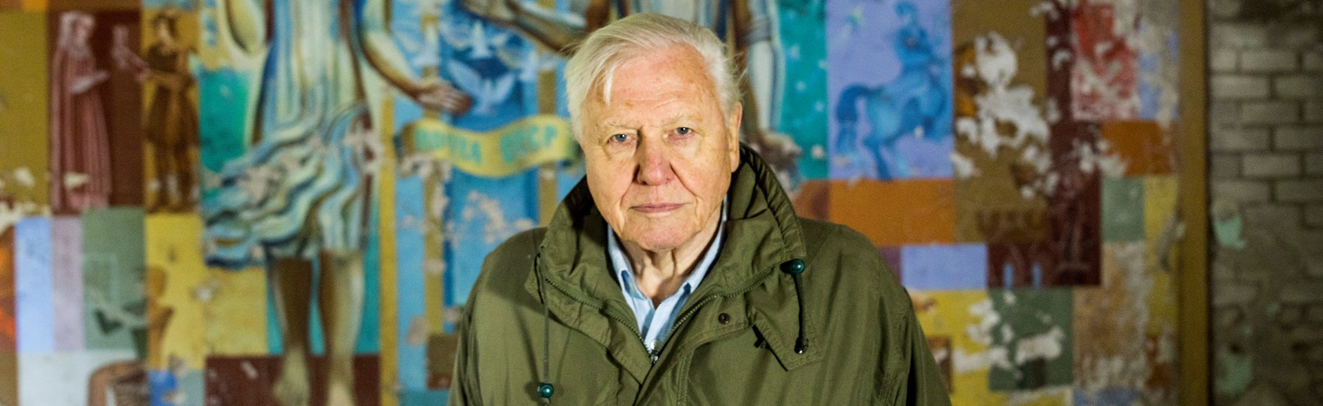 David Attenborough: A Life on Our Planet - Live From the World Premiere